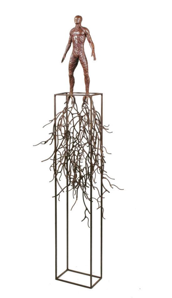 Hombre raíces - Fernando Suarez